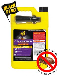 Black Flag Flea & Tick Killer - Easy in use for indoor/outdoor