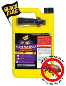 Black Flag Flea & Tick Killer - Easy in use for indoor/outdoor