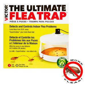 Victor M230A - Best ultimate flea trap