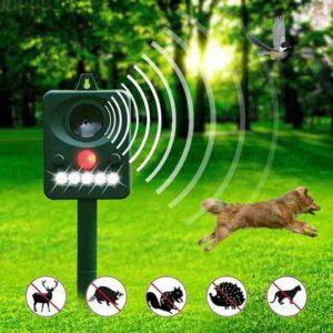 Картинки по запросу Best Dog Repellents